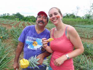 Pitstop in ananasveld