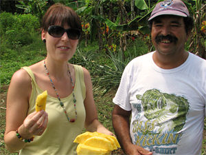 Costa Rico tico's, ananassen