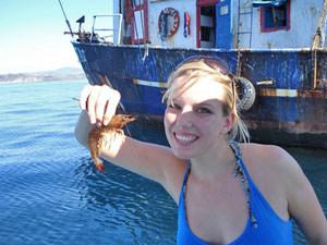 Costa Rica dolfijnen - op de boot