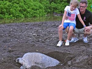 Naar het schildpadstrand
