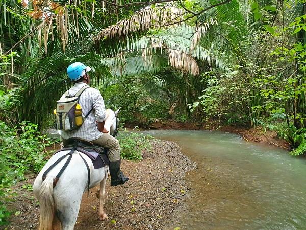 paardrijden tijdens samara reis