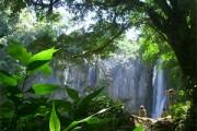 Rondreis 2: In het land van de Tico's