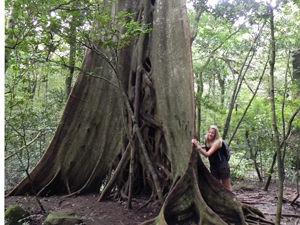 Costa Rica reis langs woudreuzen