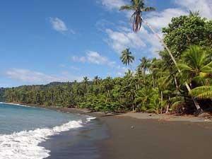 reis Costa Rica, kust Corcovado