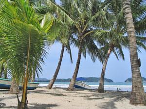 Uitgestrekte palmenstranden