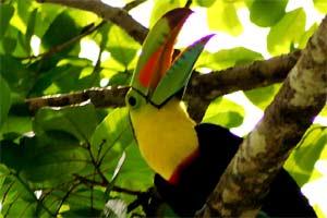Costa Rica en Nicaragua rondreis