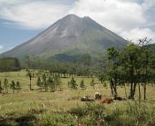 Ik wil naar Costa Rica, maar …?