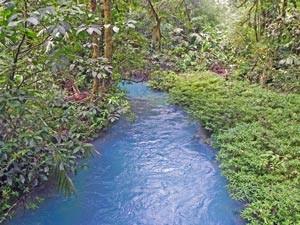 rio celeste tenorio