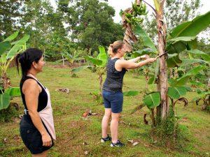 Costa Rica reis homestay
