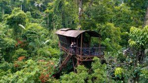 jungle costa rica rondreis