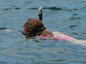 Costa-Rica-rondreis-Cahuita-snorkelen