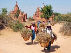 Tempel von Bagan: Alltagsleben