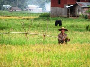 Trekking in Myanmar: Bauer bei Kalaw