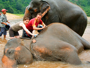 In Kalaw mit Elefanten baden