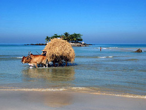 Ein Ochsenkarren am Ngapali Beach
