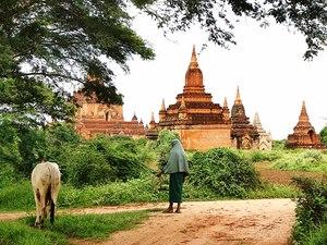 Myanmar Highlights - Tempel und Alltagsleben