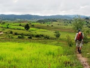 Felder in der Nähe von Kalaw