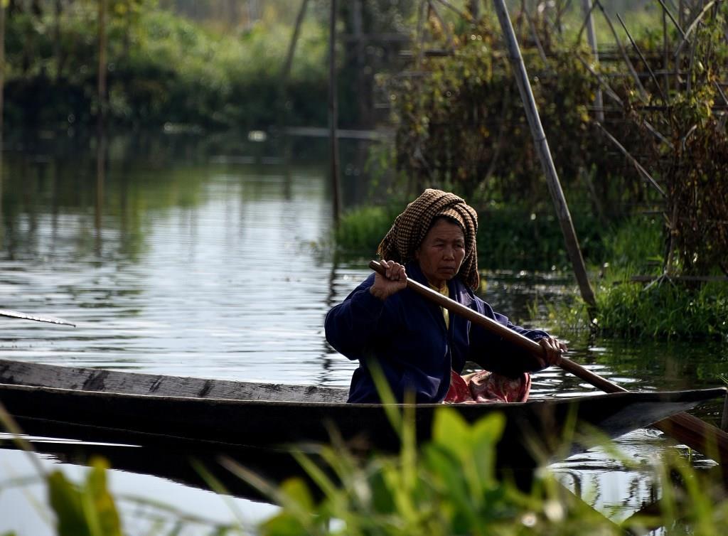 Bäuerin zwischen schwimmenden Gärten am Inle-See