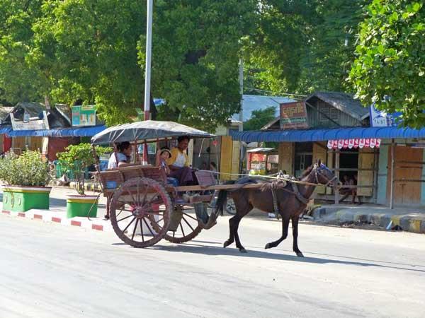 Pferdekutsche Thazi