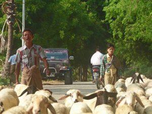 Yangon nach Bagan: Geordnetes Chaos auf Myanmars Landstraßen