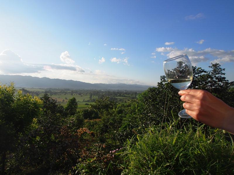 Weinberge Nyaung Shwe Inle See Weinprobe