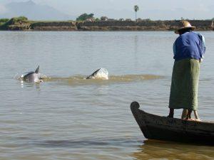 Fischer am Irrawady Fluss