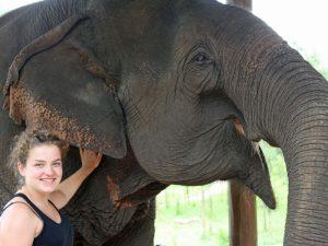Elefantencamp bei Kalaw