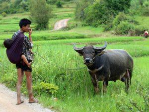 Reise durch Myanmar mit Kindern