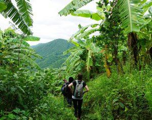 Myanmar Reise zusammenstellen-Trekking in Kalaw
