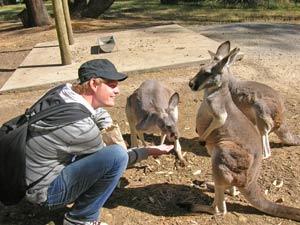 Tasmanië reizen Australie