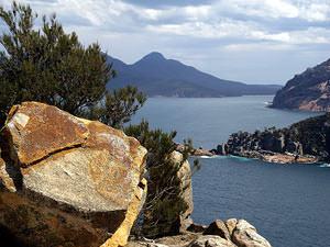 Tasmanië selfdrive