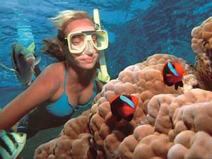 meisje koraal palm cove