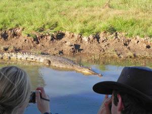 Australië Outback reis - Crocs spotten in Kakadu