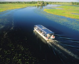 Kakadu billabong cruise