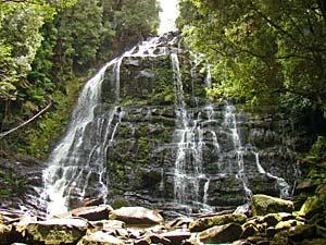 Nelson Falls tijdens Tasmanie selfdrive