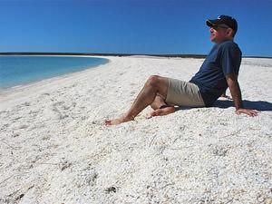 Australië oostkust reis - strand