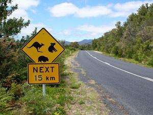 4-weken rondreis Australie