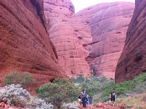 4-weken rondreis Australie Ayers Rock