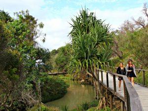 Eli Creek Fraser Island bezienswaardigheden