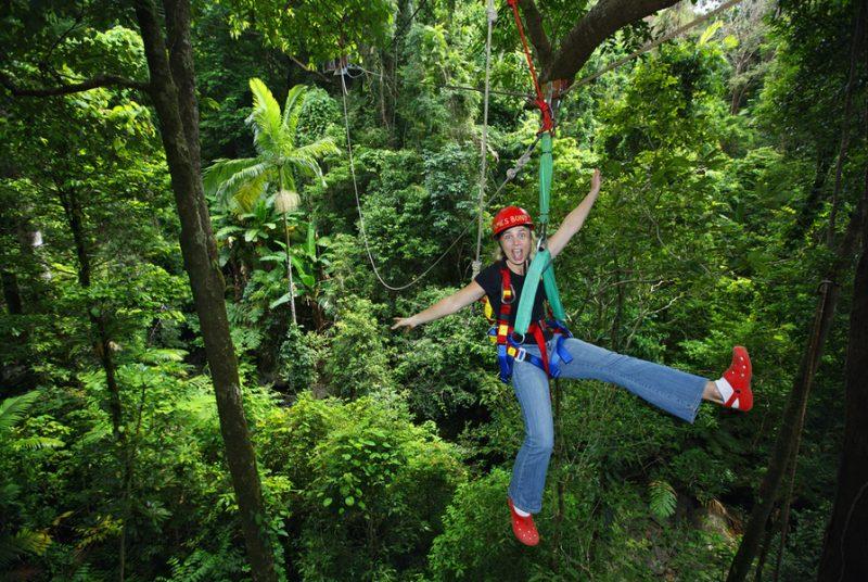 Slingerend door het regenwoud