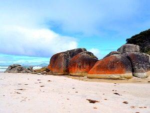 Squeeky Beach Australië