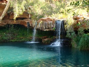 Fern Pool in Karijini National Park