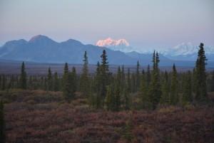 Waldbrände Alaska Karte.Kanada Aktuell Aktuelle Informationen über Kanada Erlebe Kanada