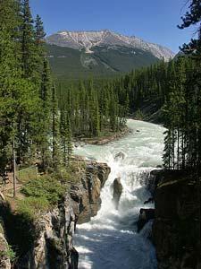 athabasca-falls-tour