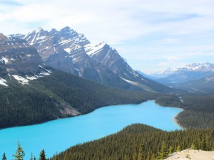 kanada-rockies-peyto-lake