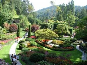 Der blühende Butchart Garden in Victoria
