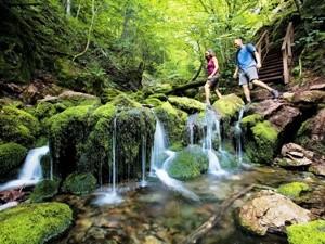 fundy-nationalpark