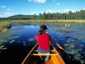 Ontario Tourism - Algonquin Provincial Park