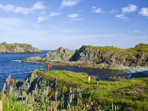 Newfoundland and Labrador tourism - Twillingate