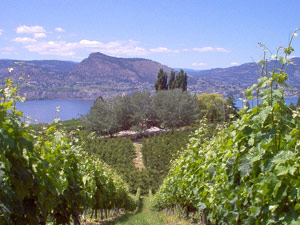 Okanagon Valley